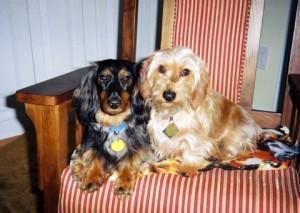 Max and Gus