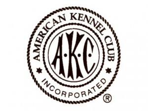 american-kennel-club